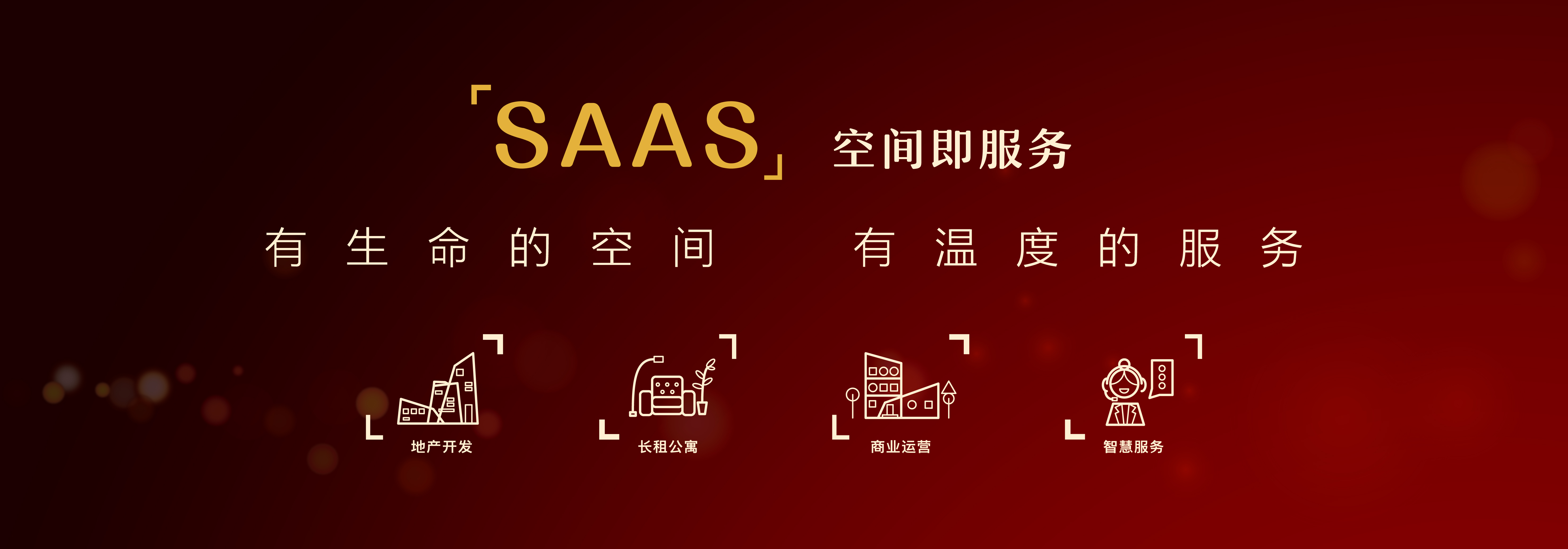 SAAS空间服务.jpg